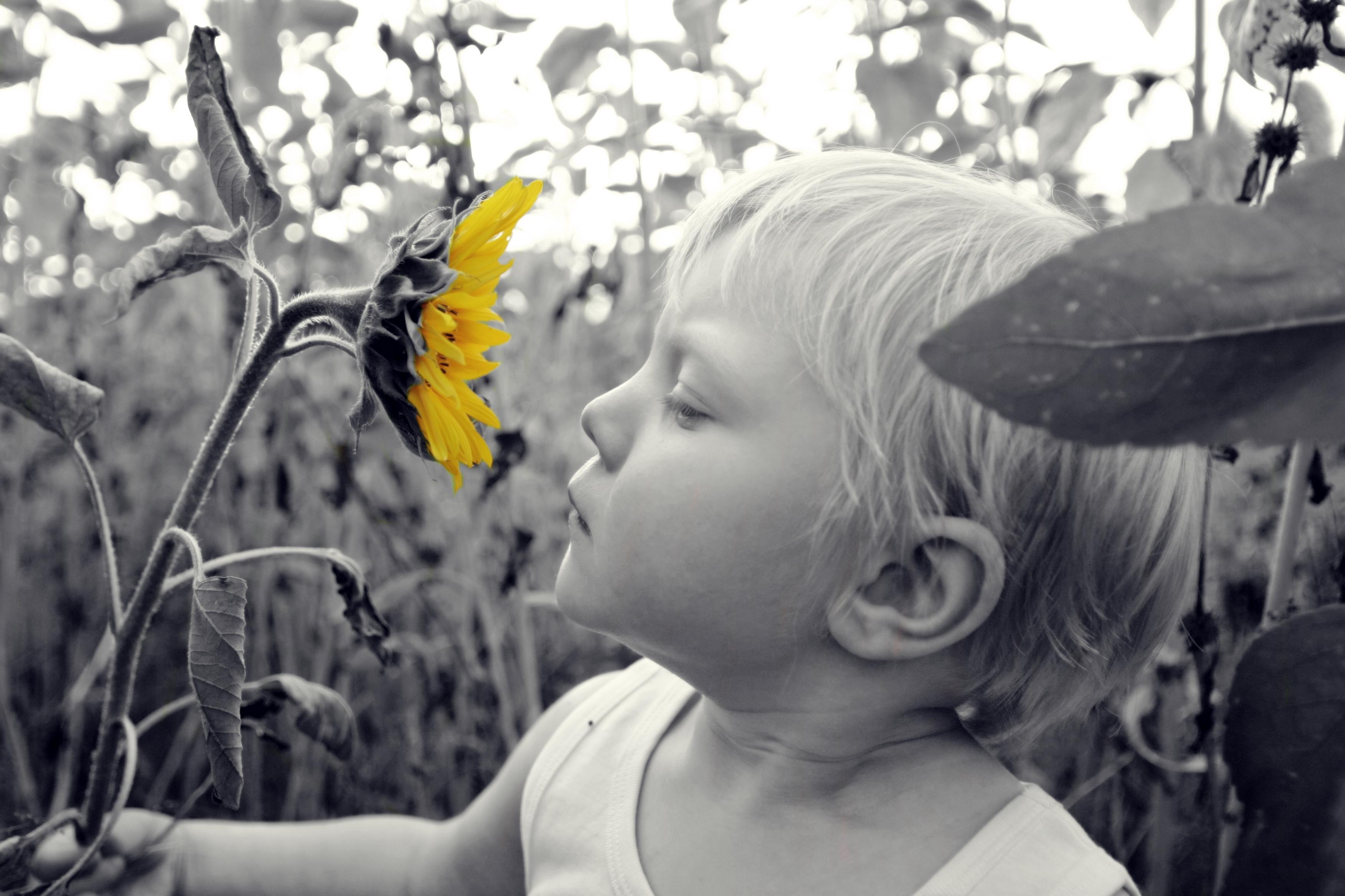 kesätarjous lasten muotokuvaus